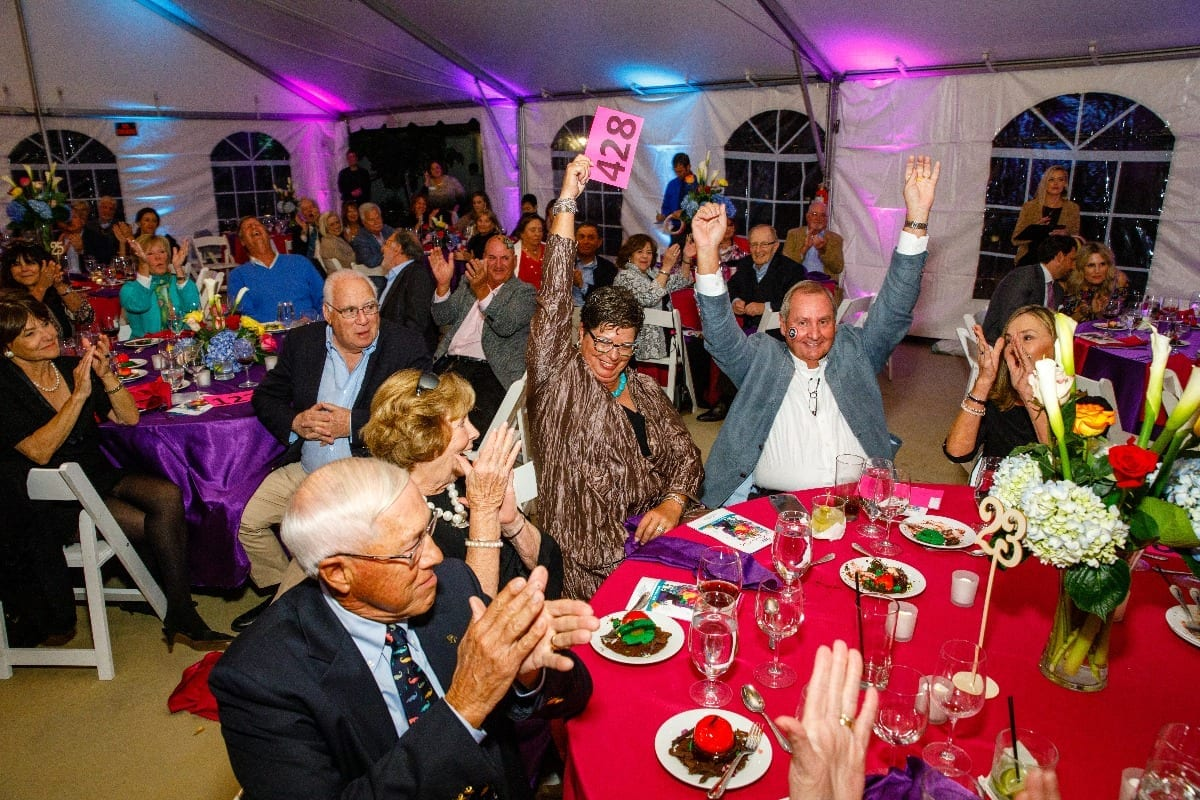 Cheering guests at Kids' Minds Matter Secret Garden Gala Event in 2019